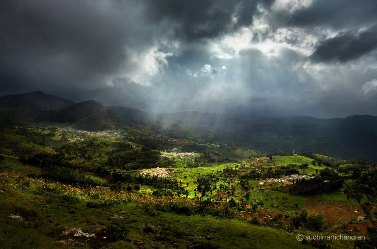 sudhir Ramchandran_nature photography.jpg